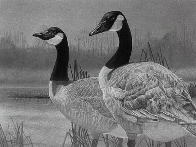 Waterfowl Drawing - Canadian Geese by Tim Dangaran