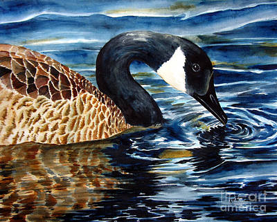 Canadian Geese Painting - Canadian Goose by Elizabeth  McRorie
