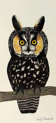 Painting - Canadian Long Eared Owl by Nicole I Hamilton