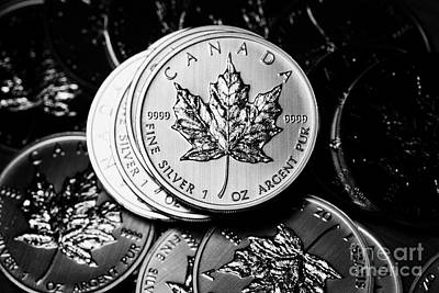 Argent Photograph - Canadian One Ounce Maple Leaf Silver Coins by Joe Fox
