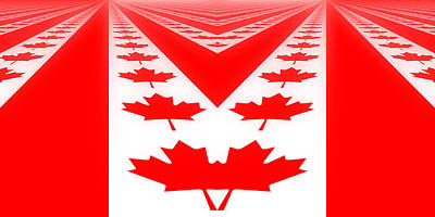 Photograph - Canadian Perspective Flag by Kurt Van Wagner