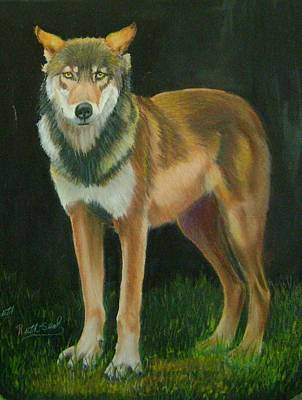 Painting - Canadian Red Wolf by Ruth Seal