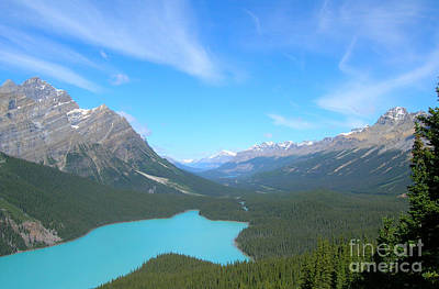 Wall Art - Photograph - Canadian Rockies Bow Summit Valley by Susan Montgomery