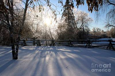 Photograph - Canadian Winter by Margaret Hamilton