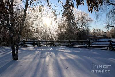Photograph - Canadian Winter by Margaret Hamilton