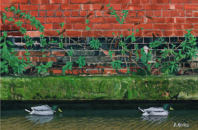 Canal Ducks Art Print