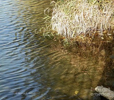 Photograph - Canal Shoreline - M Landscapes Fall Collection No. Lf19 by Monica C Stovall