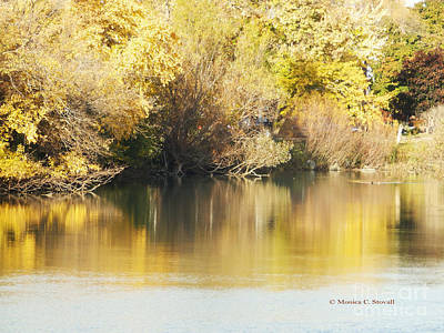 Photograph - Canal Shoreline Fall Foliage - M Landscapes Fall Colection No. Lf24  by Monica C Stovall