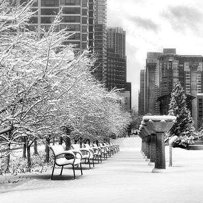 Photograph - Cancer Survivors Garden - Chicago - Downtown by Photography  By Sai