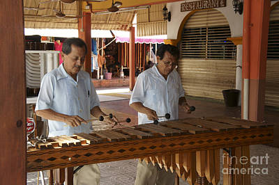 Photograph - Cancun Marimba Players by John  Mitchell