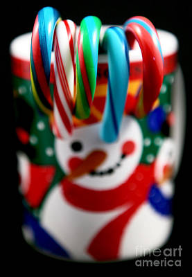 Photograph - Candy Cane Colors by John Rizzuto