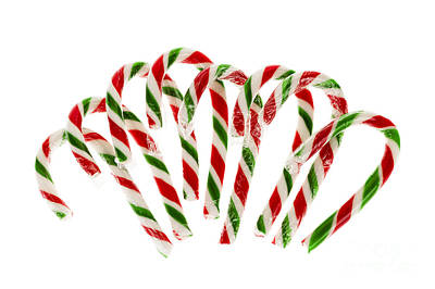 Candy Canes Art Print by Elena Elisseeva