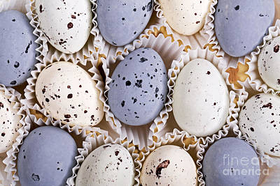 Candy Eggs Print by Jane Rix