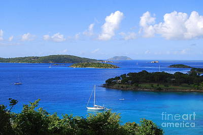 Personalized Name License Plates - Caneel Bay in St. John in the U. S. Virgin Islands by Catherine Sherman