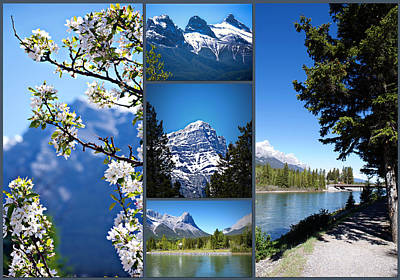 Compilation Photograph - Canmore Alberta by Lisa Knechtel