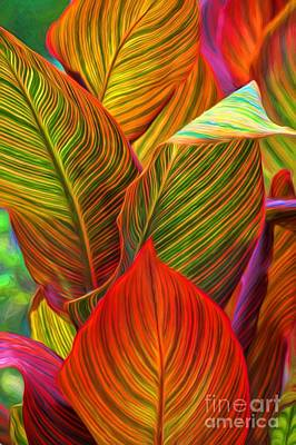 Photograph - Canna Leaves by Peggy Hughes