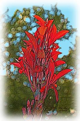Digital Art - Canna Lily by Dennis Lundell
