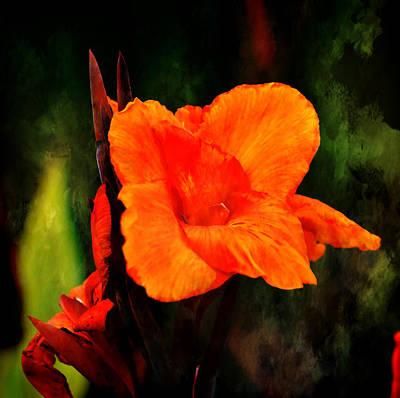 Canna Lily Wyoming Art Print by Deena Stoddard