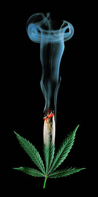 Stock Photograph - Cannabis Leaf And Burning Joint by Stock Pot Images