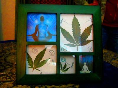 Cannabis Zen2 Original