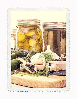 Canning Kitchen Art Art Print by Edward Fielding