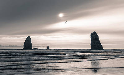 Photograph - Cannon Beach by Scott Rackers