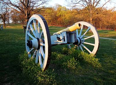 Cannon In The Grass Art Print by Michael Porchik