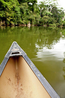 Canoeing The Macal River In Jungle Art Print
