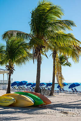 Canoes Photograph - Canoes And Palms - Higgs Beach Key West  by Ian Monk