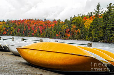 Photograph - Canoes At Algonquin Park by Les Palenik