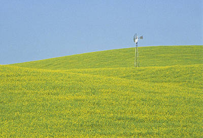 Contour Farming Photograph - Canola Windmill by Latah Trail Foundation