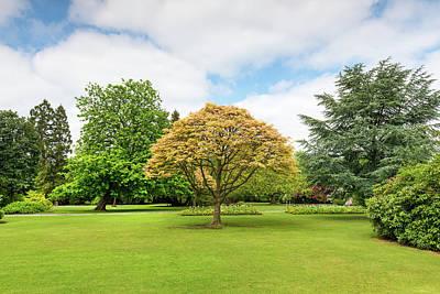 Canon Hill Park, Birmingham, England, Uk Art Print by Chris Hepburn