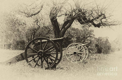 Canons In The Field Art Print