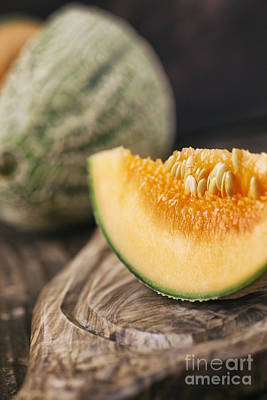 Cantaloupe Photograph - Cantaloupe Melon by Mythja  Photography