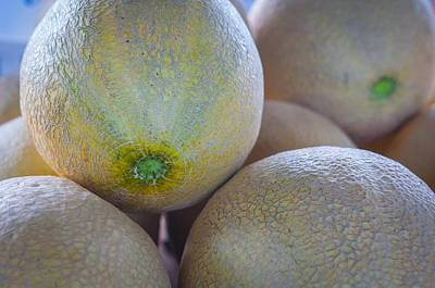 Cantaloupe Photograph - Cantaloupe by ML Jones