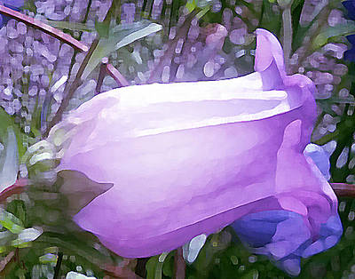 Outdoor Still Life Painting - Canterbury Bell by Michelle Rene Goodhew