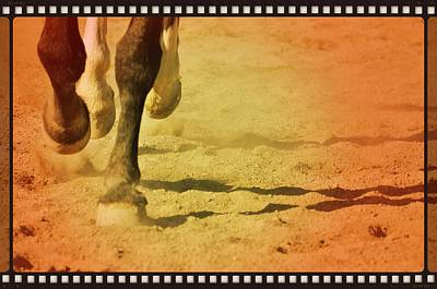 Photograph - Cantering Along Print by JAMART Photography