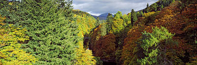 Scotland Tourism Photograph - Canyon At Killiecrankie, River Garry by Panoramic Images