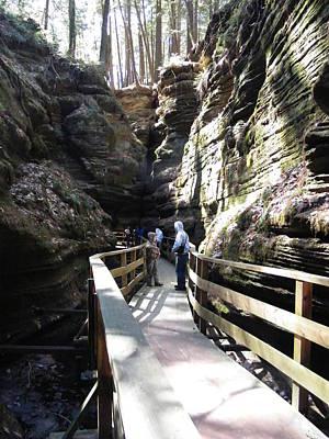 Photograph - Canyon Boardwalk2 by Ronda Douglas