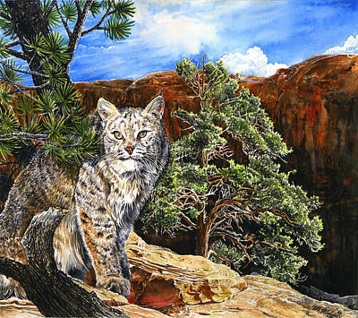 Grand Canyon Drawing - Canyon Cat by Mark Mahoney