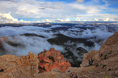 Photograph - Canyon Clouds by Darryl Wilkinson