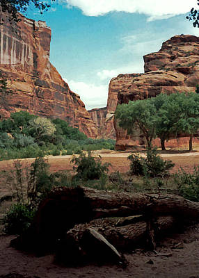 Photograph - Canyon De Chelly National Monument 1993 by Connie Fox