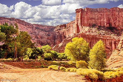 Indian Cherokee Digital Art - Canyon De Chelly Navajo Tribal Park by Bob and Nadine Johnston