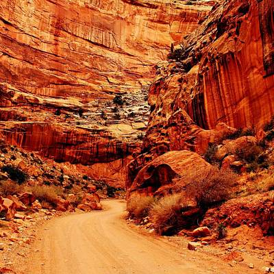 Photograph - Canyon Drive by Benjamin Yeager