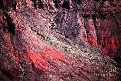 Photograph - Canyon Landing by John Rizzuto