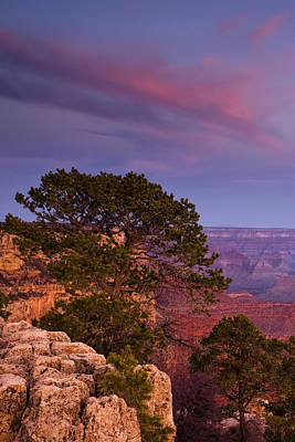 Yaki Photograph - Canyon Morning by Andrew Soundarajan