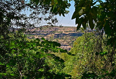 Photograph - Canyon Peeks Through The Trees by Michele Myers