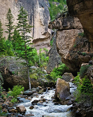Canyon Serenity - Crazy Woman Creek - Crazy Woman Canyon - Johnson County - Wyoming Art Print by Diane Mintle