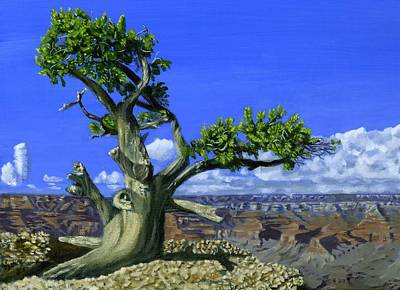 Phil Clark Painting - Canyon Tree by Phil Clark