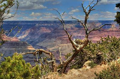 Photograph - Canyon View by Judith Szantyr